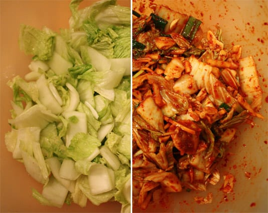 Napa Cabbage, after resting in salt and water (left) and mixed with the kimchi brine (right).