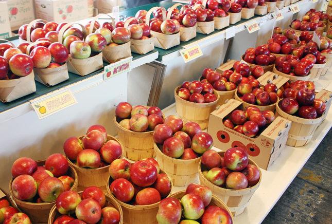 Île d'Orléans apples at Québec City's Old Port Market. // FoodNouveau.com