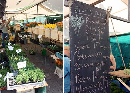 Noodermarkt Organic Farmers' Market in Jordaan, Amsterdam