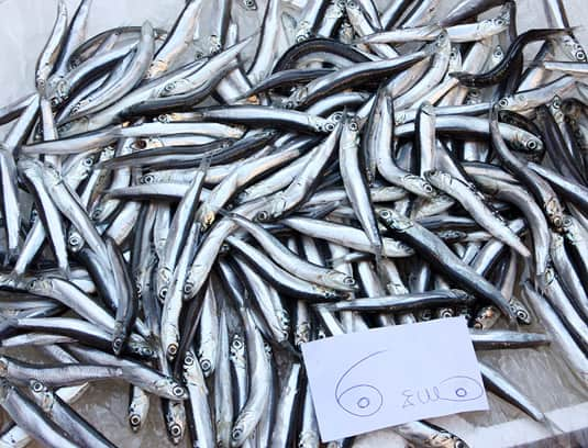 Fresh sardines at La Pescheria, fish market in Catania, Sicily