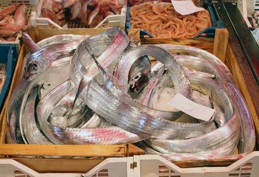 Glisteningly fresh fish at La Pescheria, fish market in Catania, Sicily