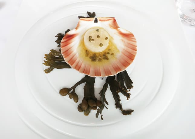 "8th course: ""The Perfect Scallop"", at Geranium Restaurant, Copenhagen / FoodNouveau.com"