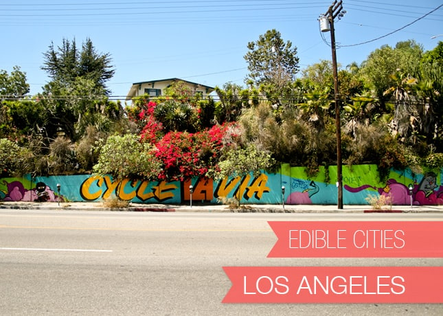 {Edible Cities} Los Angeles, with Kristin from The Cuisinerd / FoodNouveau.com