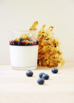 Almond Panna Cotta with Salted Praline and Macerated Blueberries (Dairy-Free)