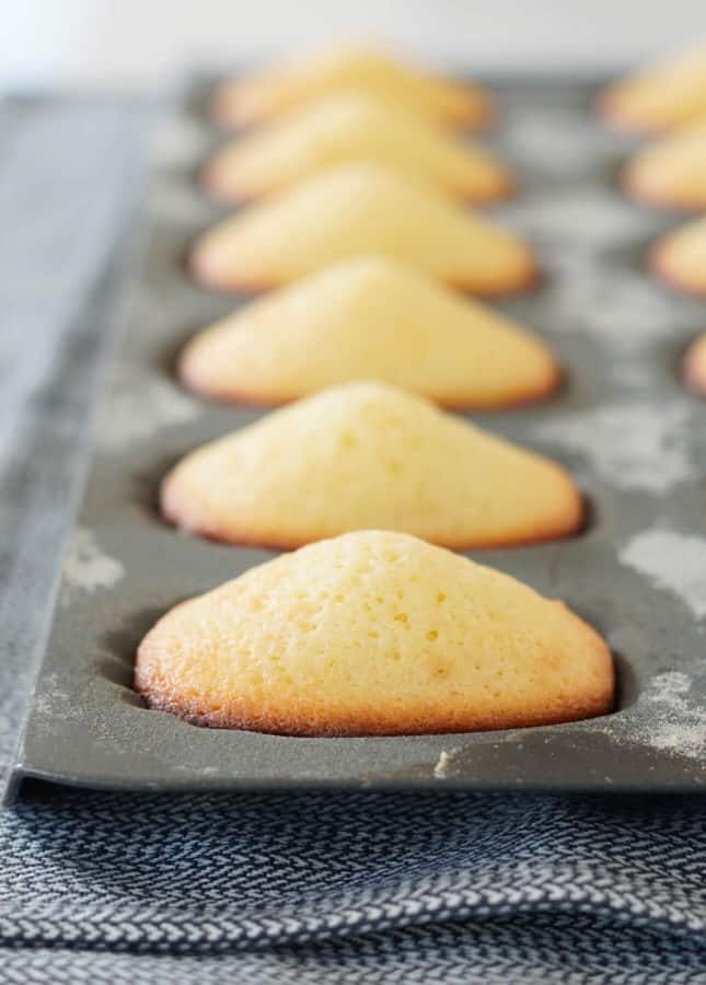 Perfect humps on classic madeleines // FoodNouveau.com