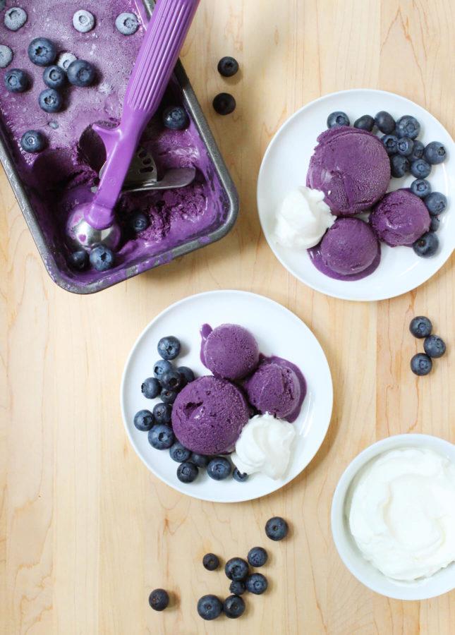 Blueberry Gelato // FoodNouveau.com