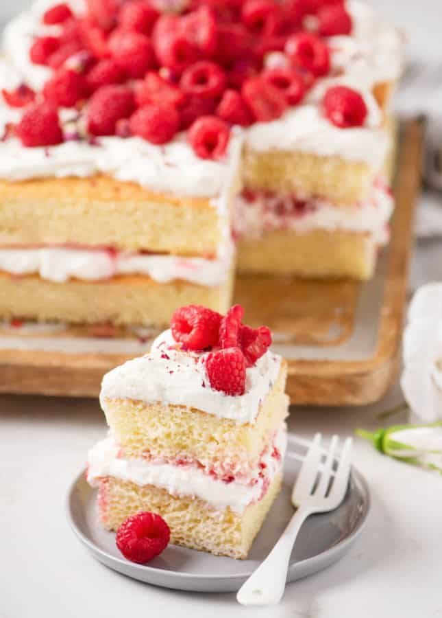 Easy, Versatile Layered Sheet Cake // FoodNouveau.com